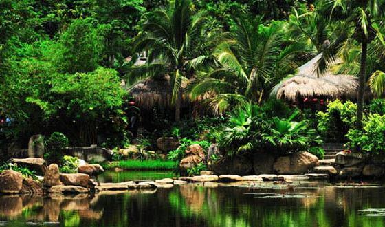 保亭 热带植物园