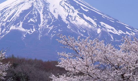 日本东京必去旅游景点_东京值得一游的景点