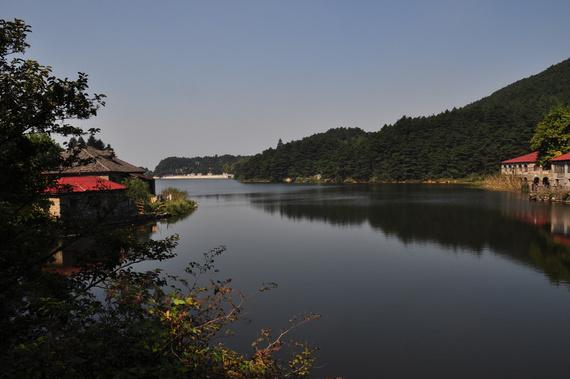 如琴湖边上是酒店和老别墅,老别墅一看就是年久失修,早已不像是有人
